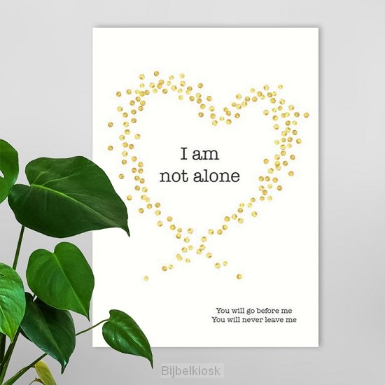 Poster a4 I am not alone
